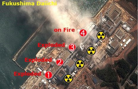 Hello World ldquo Fukushima on Facebook ndash Put the Reactor