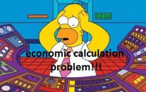 homer economic calculation problem japan
