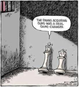 pawns and gun control