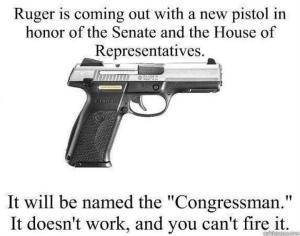 Ruger gun