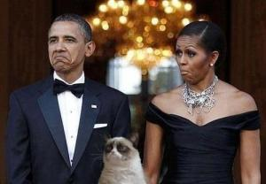 prez and grumpy cat