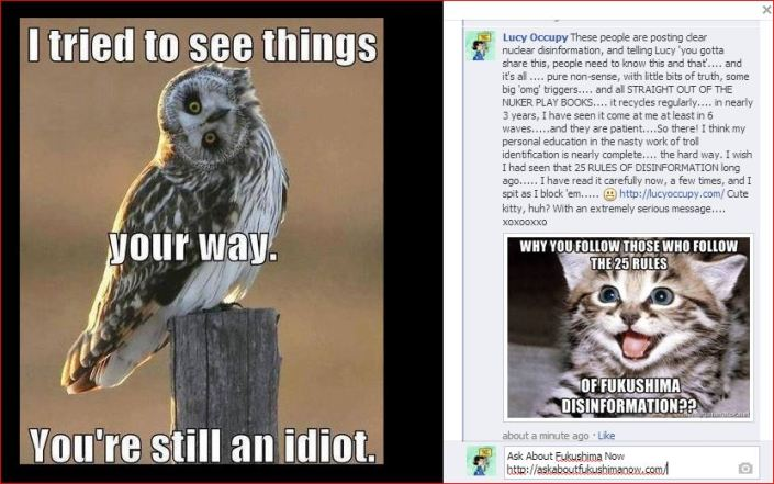 25 rules  cat and owl and idiots
