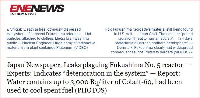 NICHOLS: Lethality of Cobalt 60 - FUKUSHIMA   (1/6)